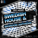 Swedish House & Big Room Anthems