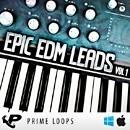 Epic EDM Leads