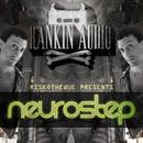 Riskotheque Presents Neurostep