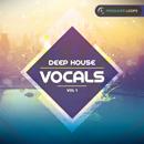 Deep House Vocals Vol 1