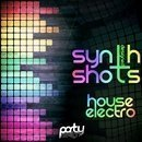 Designed Electro House Synth Shots Vol 1