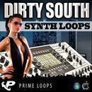 Dirty South Synth Loops (Multi-Format)