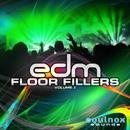 EDM Floor Fillers Vol 2