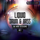 Liquid Drum & Bass: The WAV Sessions Vol 1