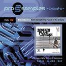 ProSamples Vol 40: Breakbeat 2