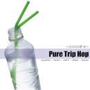Pure Trip Hop