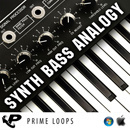 Synth Bass Analogy (Multi-Format)