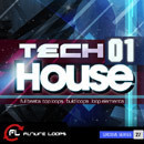 Tech-House 01