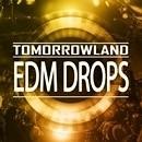 Tomorrowland EDM Drops