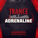 Trance Adrenaline Lead Melodies