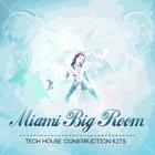 Miami Big Room Vol 1