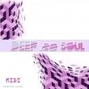 Deep & Soul: MIDI Loops