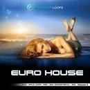 Euro House Vol 4