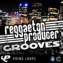 Reggaeton Producer Grooves (Multi-Format)