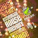Essential House Melody Vol 1