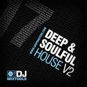 DJ Mixtools 17: Deep & Soulful House Vol 2