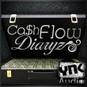 Cash Flow Diaryz 1