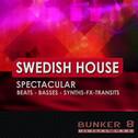 Swedish House Spectacular