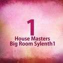 House Masters Big Room Sylenth1
