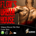 Flow's Urban House