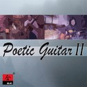Poetic Guitar II