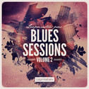 The Blues Sessions 2