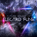Future Sound Of Electro Funk