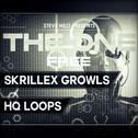 The One: Skrillex Growls