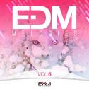 EDM Melodies Vol 6