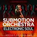 Submotion Orchestra: Electronic Soul