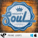 Mighty Soul