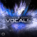 Soulful & Garage Vocals Bundle