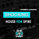 Shocking House For Spire