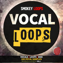 Vocal Loops