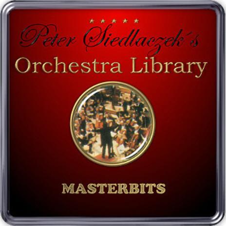 Peter Siedlaczek's Orchestra (AKAI)