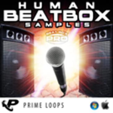 Human Beatbox Samples Pro (Multi-Format)