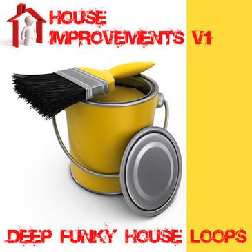 House Improvements Vol 1