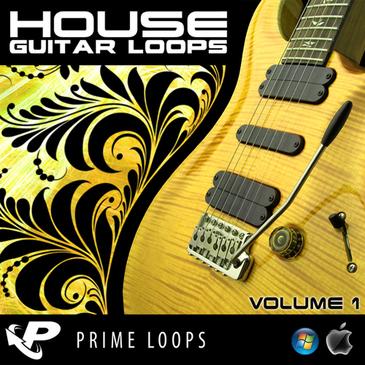 House Guitar Loops (Reason Refill)