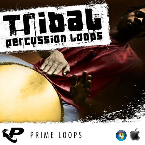 Tribal Percussion Loops (Multi Format)