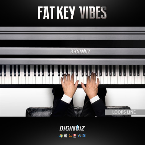 Fat Key Vibes