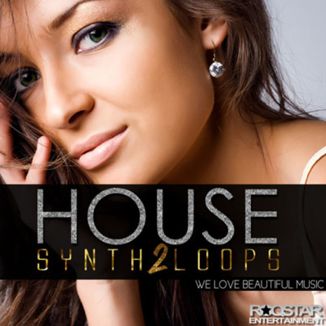 House Synth Loops Vol 2