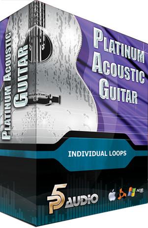 Platinum Acoustic Guitar Loops 1
