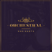 Orchestral One-Shots