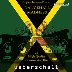 Dancehall Madness Vol 1