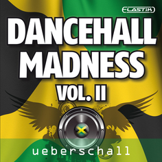 Dancehall Madness Vol 2