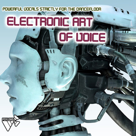 Electronic Art of Voice