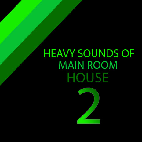 Heavy Sounds of Main Room House 2