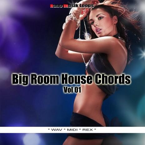 Big Room House Chords Vol 1