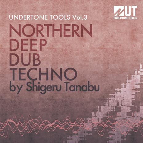 Northern Deep Dub Techno Vol 3