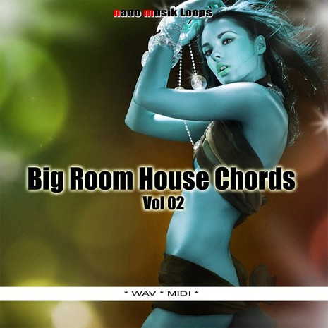 Big Room House Chords Vol 2